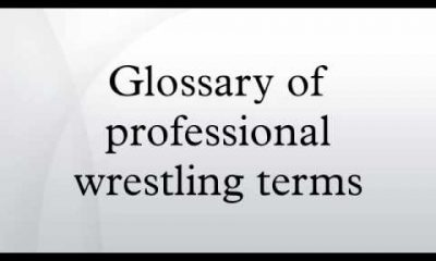 pro wrestling terms